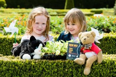 At the Grow Wild NI, Garden Show at Castle Gardens Antrim.