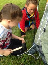 beavers putting up tent